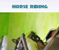 Horse Riding Gallery Button
